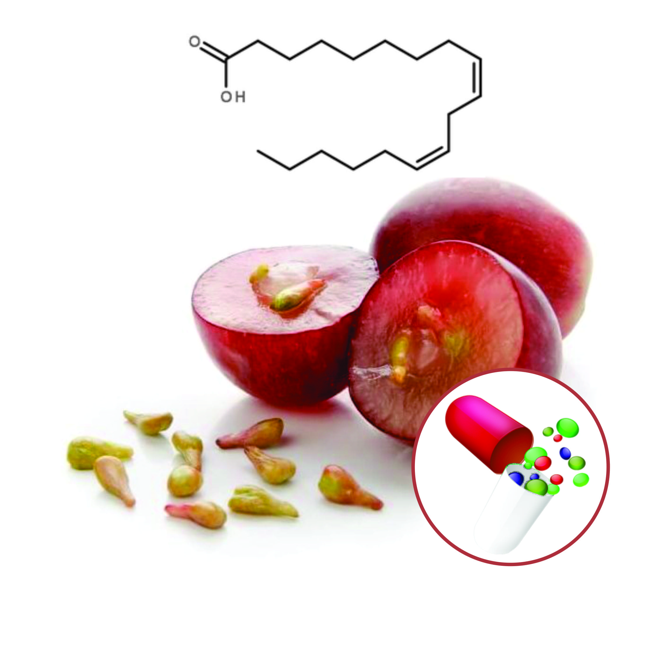 Grape Seed Extract Beadlets
