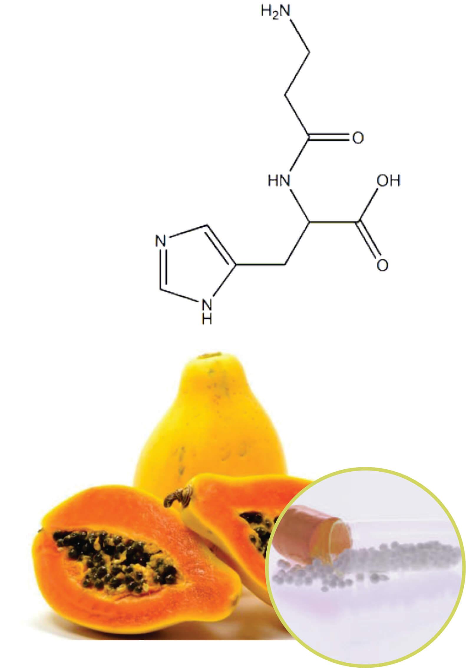 papaya Beadlets